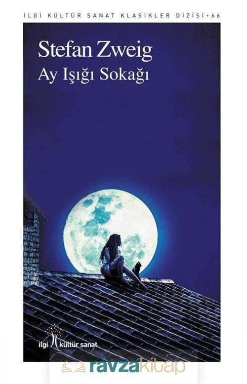 ay-isigi-sokagi-238655-hikaye-eviri-lgi-kltr-sanat-yaynlar-stefan-zweig-240100-23-B.jpg (35 KB)