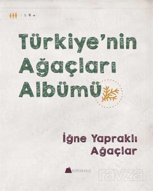 Türkiye'nin Ağaçları Albümü İğne Yapraklı Ağaçlar